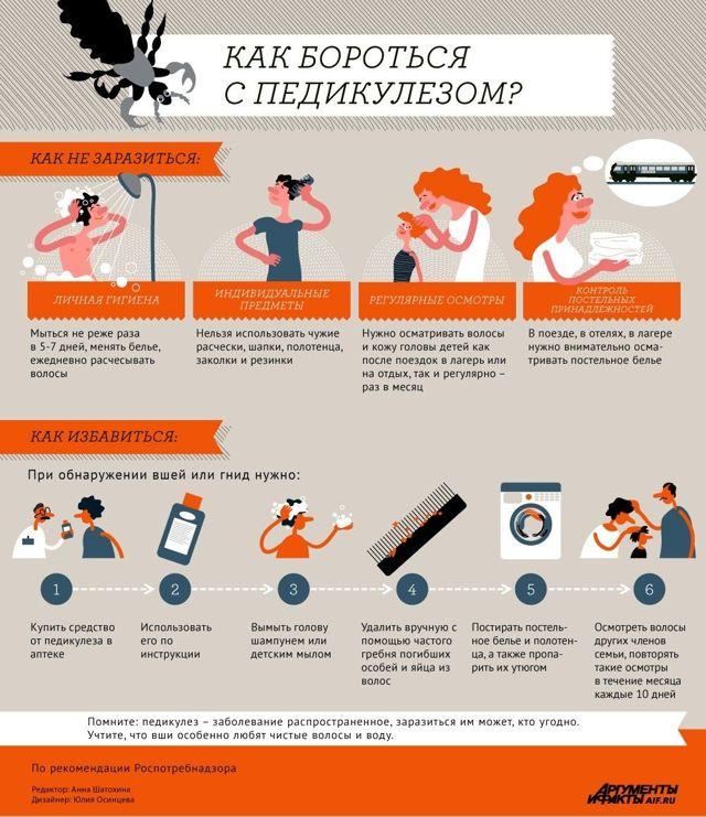 Педикулез: признаки, пути заражения, методы лечения и профилактики | ОкейДок