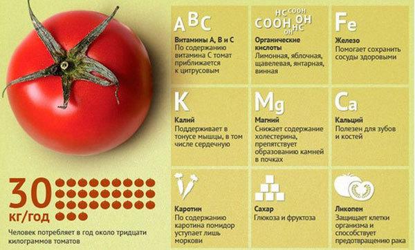Полезные свойства томатов, химический состав и пищевая ценность, вред и противопоказания.