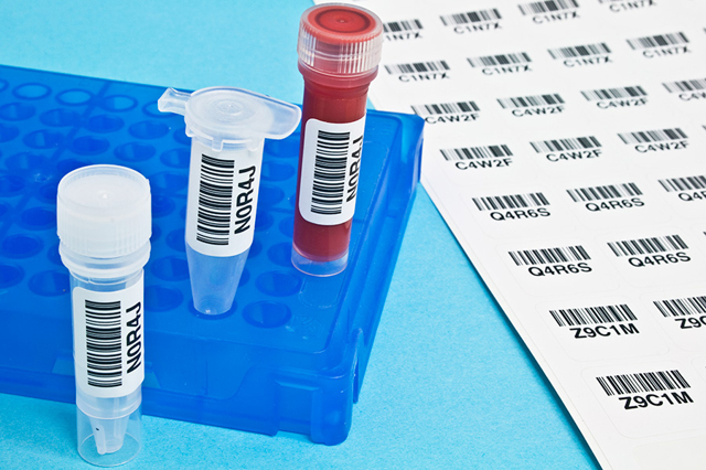 Диагностика хламидиоза: анализы на chlamydia trachomatis, расшифровка у мужчин и женщин