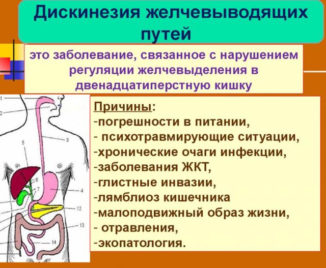 Диета при дискинезии желчевыводящих путей: питание при дискинезии, меню на неделю