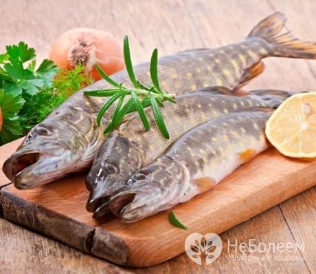 Щука: полезные свойства, пищевая ценность, возможный вред, советы по выбору