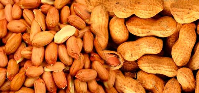 Полезные свойства арахиса, противопоказания и вред, химический состав продукта, применение арахиса в оздоровительных целях