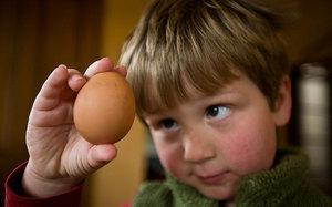 Аллергия на яйца: симптомы у взрослых и детей, диагностика, лечение