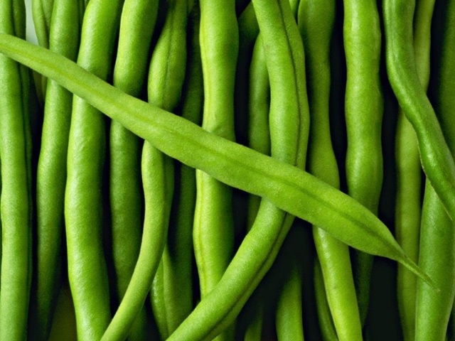 Фасоль стручковая: польза, вред, пищевая ценность, состав, полезные советы