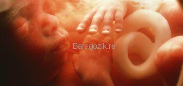 23 неделя беременности: развитие плода, что происходит, ощущения мамы