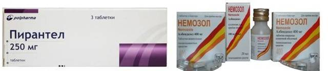 Глисты: симптомы и лечение у взрослых, народные средства от глистов, анализы на глисты