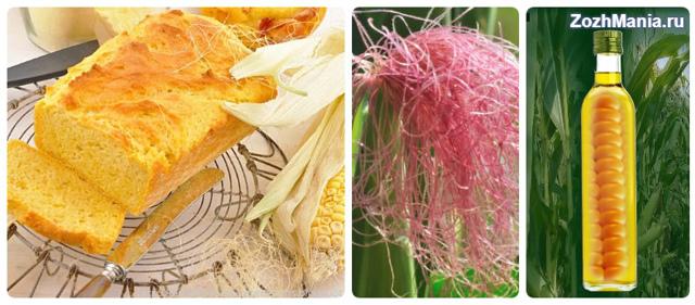 Полезные свойства кукурузы, противопоказания кукурузы и ее вред для организма человека, химический состав и пищевая ценность, использование кукурузы в народной медицине