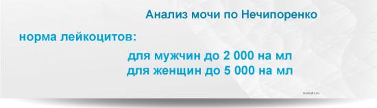 Расшифровка анализа крови и анализа мочи по Нечипоренко: что означают результаты анализов мочи и крови