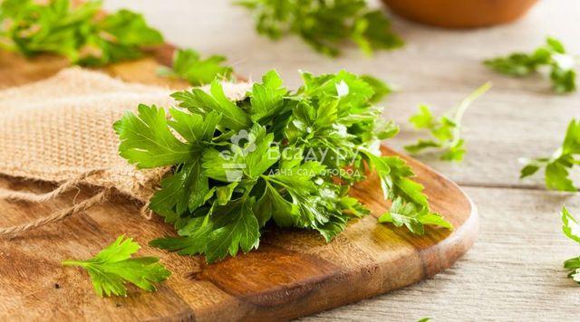 Петрушка – польза, вред, состав, пищевая ценность, советы по применению