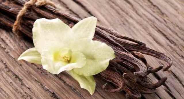 Ваниль – польза и вред, состав, противопоказания, лечебные свойства