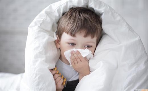 Энцефалиты: виды, причины, симптомы, методы лечения гриппозного, ревматического, эпидемического, японского энцефалита.