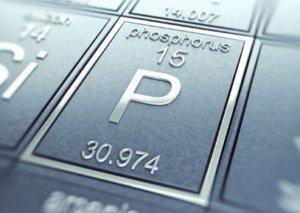 Фосфор в организме: сколько надо фосфора, недостаток и избыток фосфора, фосфор в продуктах