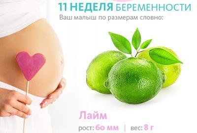 11 неделя беременности: что происходит, развитие плода, ощущения мамы