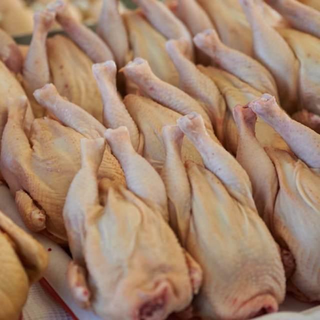 Индюшатина: польза и вред, химический состав мяса индеек, калорийность и пищевая ценность индюшатины.