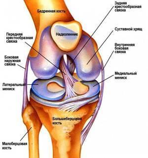 Рассекающий остеохондрит тазобедренного сустава: симптомы, лечение