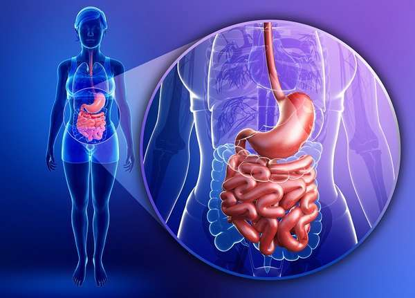 Диета после операции на кишечнике — особенности питания в первые и последующие дни после операции, примеры меню на день