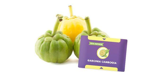 Гарциния камбоджийская для похудения: инструкция, описание, польза, противопоказания и вред гарцинии для организма, ее применение для похудения