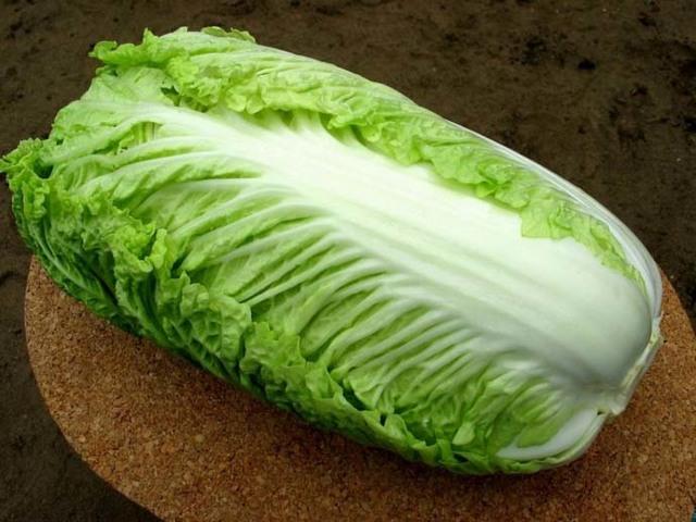 Полезные свойства пекинской капусты, пищевая ценность и химический состав, вред пекинской капусты для организма, основы ее выбора и хранения