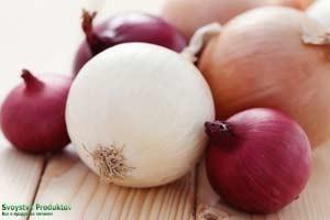 Полезные свойства лука репчатого, вред лука, состав, пищевая ценность, использование в быту