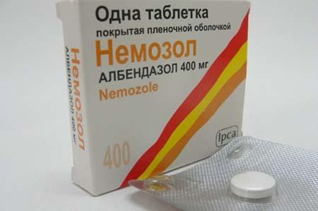 Энтеробиоз: симптомы, диагностика, лечение и профилактика, особенности энтеробиоза у детей