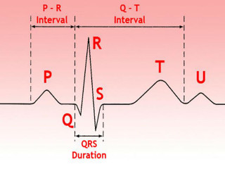 Как расшифровать ЭКГ сердца и диагностировать патологии сердца по ЭКГ