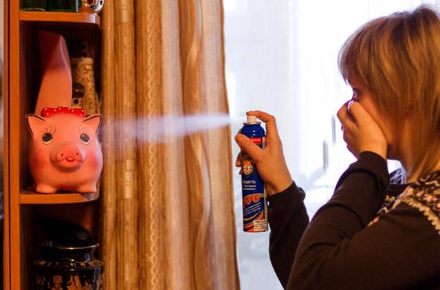 Как предотвратить заражение вшами: средства профилактики от вшей и гнид и способы обеззараживания личных вещей