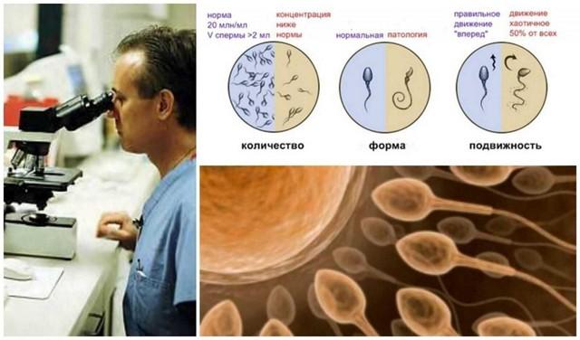 Свинка и бесплодие: осложнения, что делать, если плохая спермограмма после свинки