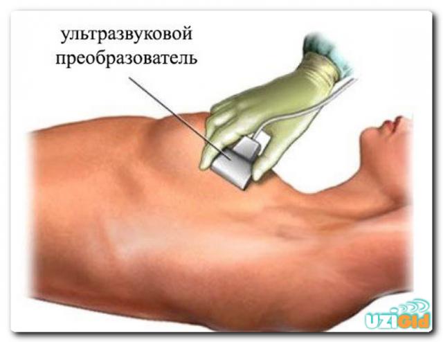 Правила проведения узи молочных желез
