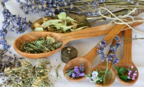 Какие можно пить травы при панкреатите поджелудочной железы: обзор полезных и опасных природных компонентов для лечения