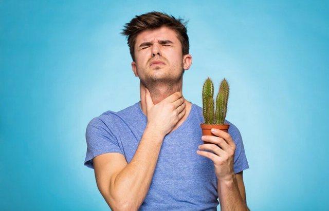 Боли в горле: причины, симптомы, лечение, что делать, если ощущается боль в горле при глотании