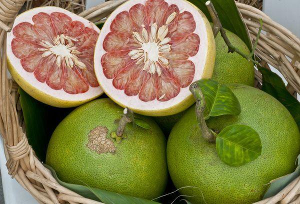 Помело: польза и вред, пищевая ценность, состав, использование помело в косметологии