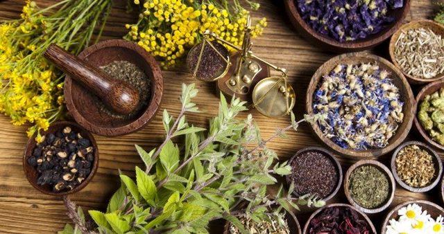 Лечение псориаза в домашних условиях: кремы и мази от псориаза, народные средства при псориазе