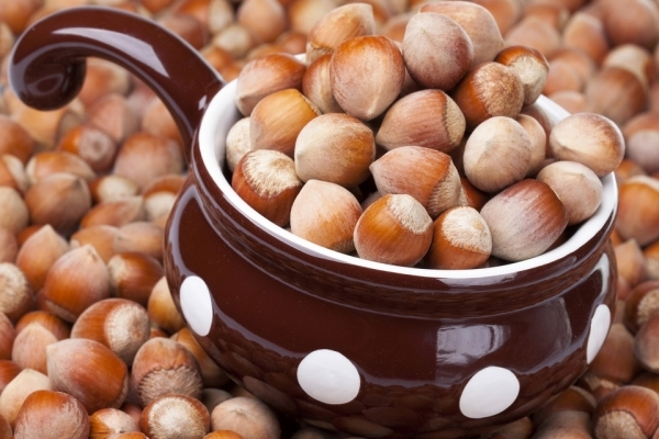 Отличие фундука от лесного ореха, полезные свойства фундука,состав, пищевая ценность, противопоказания и вред фундука для организма, применение в косметологии