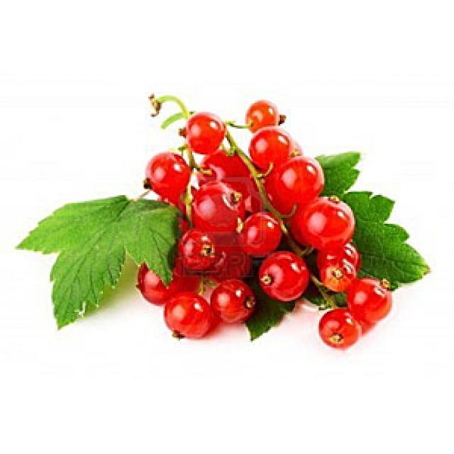 Полезные свойства красной смородины, пищевая ценность и химический состав, противопоказания к употреблению красной смородины, применение в народной медицине