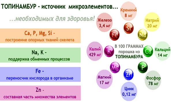 Полезные свойства топинамбура, состав, пищевая ценность, рецепты приготовления, вред топинамбура для организма